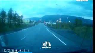В Норильске в черте города дважды видели медведей