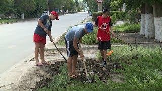 Волгоградские школьники трудоустраиваются на время каникул