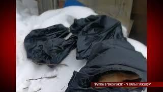 26 03 2018 Кураторы приюта для животных «Простоквашкино» в Ижевске сообщили об отравлении всех собак