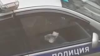 видео pyatigorsk_online