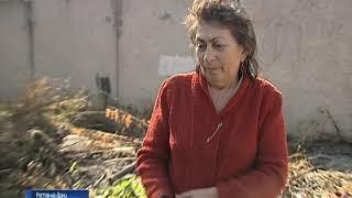 Могила легендарного Алексея Береста и свалка: что происходит на Александровском кладбище Ростова?