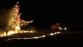 Австралия под огнем