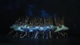 """К четвертому году проведения форум """"Белая акация"""" обрёл статус международного"""