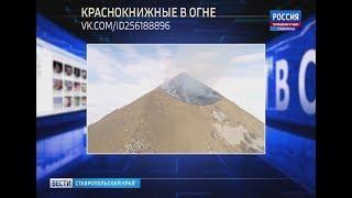 """""""Вести в сети"""". Выпуск #218"""