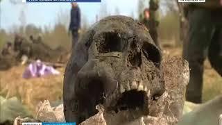 Красноярские поисковики вернулись с раскопок в Новгородской области