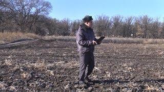 Сотрудники Россельхознадзора борются с захламлением земель сельхозназначения