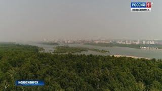 Пожары в Красноярском крае стали причиной дымки в Новосибирске