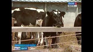 В Адыгее организованы 8 сельскохозяйственных кооперативов