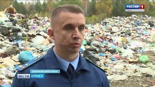 В Злынке мусор вывозят почти что на территорию заказника