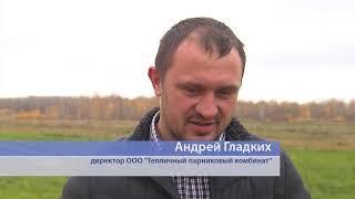 Роспотребнадзор проверил урожай-2018 на нитраты