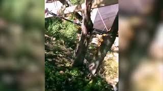 Очевидцы сообщают о гибели 27-летнего парня из-за обрушения горы в Кисловодске
