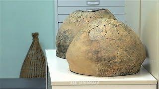В Сургутском музее покажут уникальные экспонаты