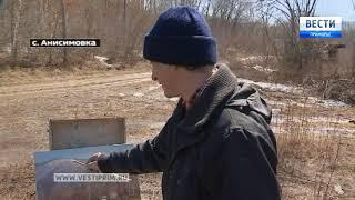 """""""Приморью - 80! Наша история"""": Три приморских живописца на пленэре в Анисимовке"""