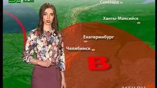 Прогноз погоды от Елены Екимовой на 23,24,25 февраля