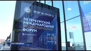 Итоги Петербургского экономического форума: Башкортостаном подписаны соглашения на 30 млрд рублей