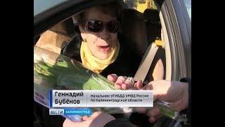 На улицах Калининграда «Цветочный патруль» поздравил автоледи с наступающим женским днём