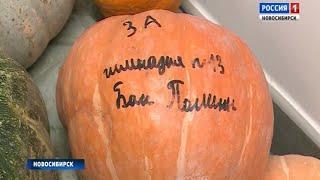 Новосибирский зоопарк объявил о сборе овощей и фруктов для животных
