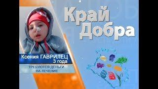 «Край Добра» помогает собрать деньги для Ксении Гаврилец