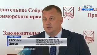 Приморские депутаты приняли законы о соцподдержке детей-сирот и получателей ипотек