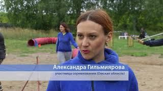 В Омске прошел чемпионат Сибирского федерального округа по кинологическому спорту