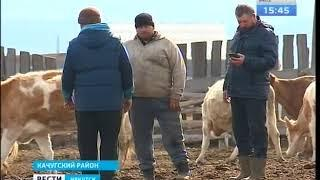 Первую семейную молочную ферму построили в Качугском районе