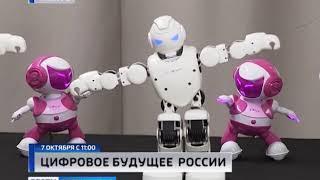 В калининградском дворце спорта «Юность» стартует фестиваль «Цифровое будущее России»