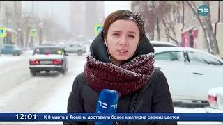 Снегопад в Тюмени. Включение