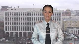 МВД РФ: в Алтайском крае украли леса на 500 млн рублей и вывезли за пределы России