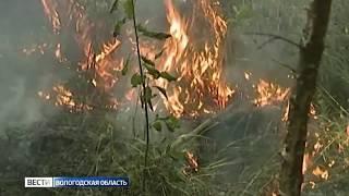В Нюксенском и Верховажском районах достигнут четвертый класс пожарной опасности