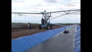 В Самарской области запущен новый оросительный участок площадью 910 га
