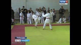 В столице Чувашии разыграли награды Кубка России по каратэ, версия WKC