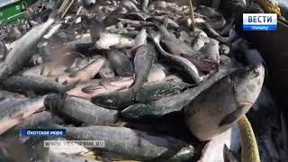 Приморские рыбаки идут работать на Камчатку, Сахалин и Курилы
