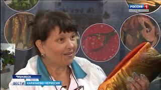 Вести Карачаево-Черкесия 10.10.2018