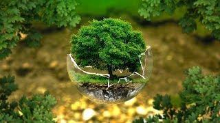 В Югре создают экологическое волонтёрство