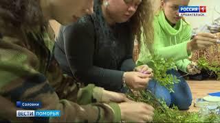 На Соловках работает летняя школа САФУ