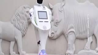 В Ростовском зоопарке начал продавать билеты робот-кассир