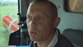 В Калининградской области стартовала уборочная
