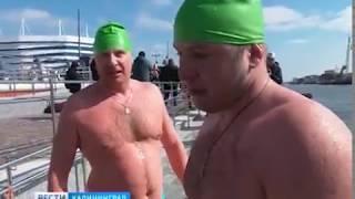 «Янтарные моржи» устроили заплыв по Прелоге в честь ЧМ-2018