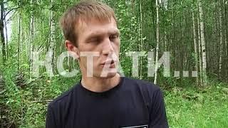 Благородных оленей из Алтайских лесов привезли в Дальнеконстантиновский район