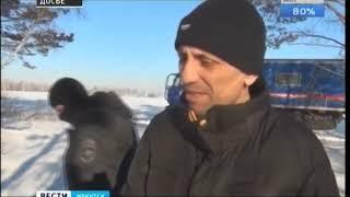 Два пожизненных за 84 убийства  Такой приговор сегодня озвучили для ангарского маньяка Михаила Попко