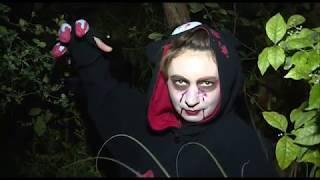 Ночь страха в темном лесу (Ботанический сад ТГУ)