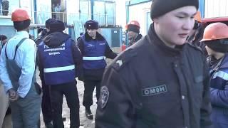 Миграционный рейд в Пушкинском районе Санкт-Петербурга
