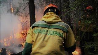 В Югре объявлен пожароопасный сезон