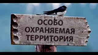 Экология и мы - 7.03.18 Особо охраняемые природные территории