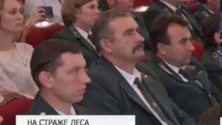 Работников леса и охотничьего хозяйства чествовали в Белгороде