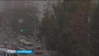 В Башкирии ожидается сильный ветер с порывами до 20 м/с