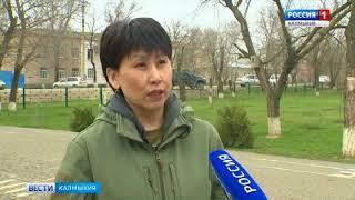 В Яшкульской многопрофильной гимназии отметят День сайгака