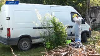 В Симферополе продолжается борьба с амброзией