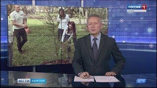 Жители Петрозаводска высадили деревья в День мира