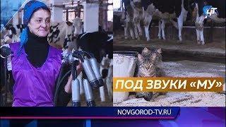 Ольга Гончарук награждена благодарностью от федерального Министерства сельского хозяйства